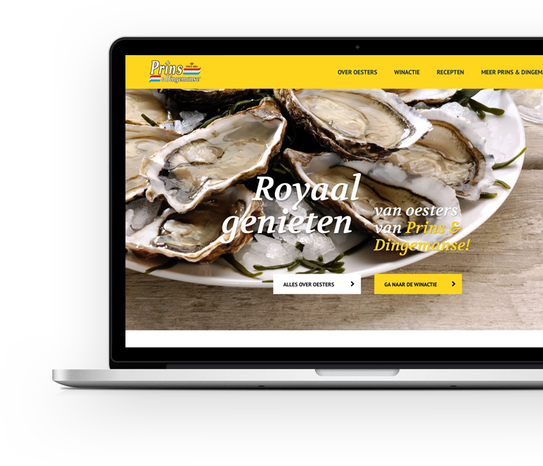 Website Prins en Dingemanse online marketing