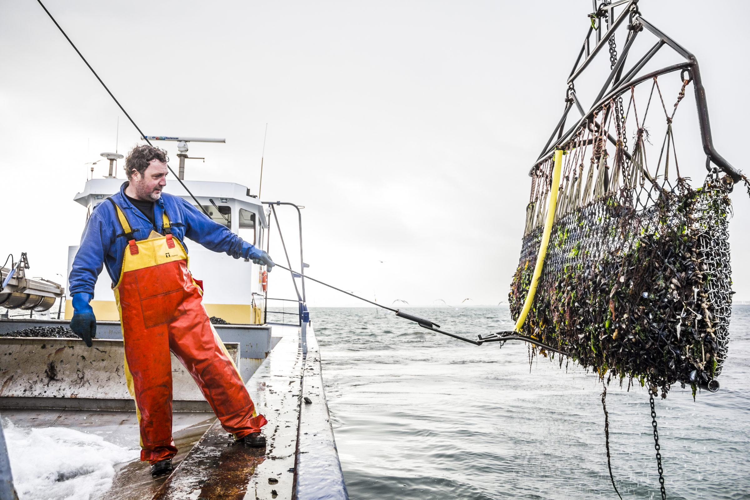 Vissersboot naamsbekendheid creeren prins en dingemanse