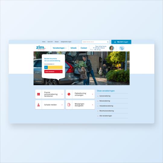 Portfolio ZLM online marketing